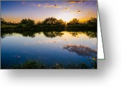 Da Greeting Cards - Sonoran Desert Sunset Reflection Greeting Card by Scott McGuire
