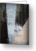 Panama City Beach Greeting Cards - Splash Greeting Card by Debra Forand
