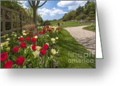 D700 Greeting Cards - Spring Garden Greeting Card by Donald Davis