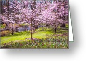 Jenny Rainbow Greeting Cards - Spring Wonderland. Garden Keukenhof. Netherlands Greeting Card by Jenny Rainbow