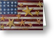 Sea Life Art Greeting Cards - Starfish on American flag Greeting Card by Garry Gay