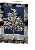 Snowy Night Greeting Cards - Starlight Greeting Card by Ursula Freer
