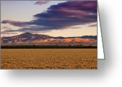Troy Greeting Cards - Storm Clouds and Wheat Fields San Joaquin County CA Greeting Card by Troy Montemayor