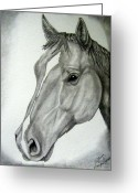 Western Pencil Drawing Greeting Cards - Stout Greeting Card by Tanya Arends