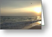 Panama City Beach Greeting Cards - Sunset Down Greeting Card by Debra Forand