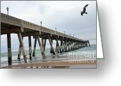 Wrightsville Greeting Cards - Surreal Beach Ocean Coastal Fishing Pier Seagull North Carolina Beach and Ocean Greeting Card by Kathy Fornal