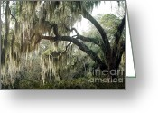 Surreal Gothic Angel Photography Greeting Cards - Surreal Gothic Savannah Georgia Trees with Hanging Moss Greeting Card by Kathy Fornal