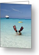 Cruise Ship Greeting Cards - Swimming at a Caribbean Beach Greeting Card by David Smith