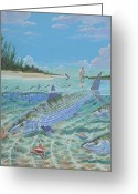 Backcountry Greeting Cards - Tailing Bonefish Greeting Card by Carey Chen