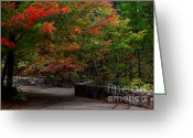 Lanscape Photo Greeting Cards - Talimena Park Greeting Card by Robert Frederick