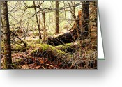 Larry Ricker Greeting Cards - Tangled Forest Greeting Card by Larry Ricker