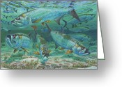 Miami Painting Greeting Cards - Tarpon rolling Greeting Card by Carey Chen