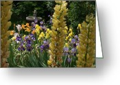 Mick Anderson Greeting Cards - The Flower Garden and Bird Bath Greeting Card by Mick Anderson
