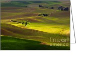 Wheatfields Photo Greeting Cards - The Light Touch Greeting Card by Reflective Moments  Photography and Digital Art Images