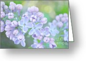 Tara Turner Greeting Cards - The Lilacs Greeting Card by Tara Turner