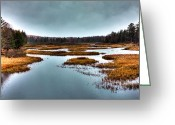 Folage Greeting Cards - The Moose River - Old Forge New York Greeting Card by David Patterson