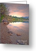Tara Turner Greeting Cards - The Morning Calm Greeting Card by Tara Turner
