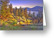 Tara Turner Greeting Cards - The Old Resting Place Greeting Card by Tara Turner
