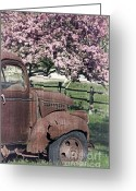 Fielding Greeting Cards - The Old Truck and the Crab Apple Greeting Card by Edward Fielding