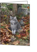 Gray Tabby Greeting Cards - The Prime Minister Greeting Card by Pamela Roberts-Aue
