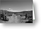 Ann Powell Greeting Cards - The Road black and white photograph Greeting Card by Ann Powell