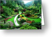 Formal Mixed Media Greeting Cards - The Sunken Garden Greeting Card by Janet Ashworth