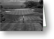 Tropical Golf Course Greeting Cards - The Swing Greeting Card by Mountain Dreams