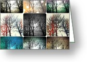 Winter Trees Digital Art Greeting Cards - Theme with Variation Greeting Card by Natasha Marco