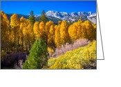 Aspen Trees Greeting Cards - Tioga Pass Greeting Card by Scott McGuire