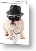 Doggy Greeting Cards - Tough Dog Greeting Card by JT PhotoDesign