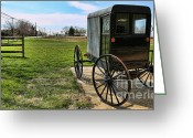 Amish Family Greeting Cards - Traditional Amish Buggy Greeting Card by Lee Dos Santos