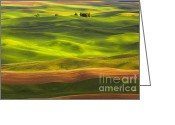 Wheatfields Photo Greeting Cards - Undulation  Greeting Card by Reflective Moments  Photography and Digital Art Images