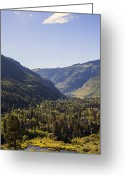 Madeline Ellis Greeting Cards - Vail in Summer Greeting Card by Madeline Ellis
