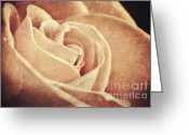 Dreamy Flower Greeting Cards - Vintage rose Greeting Card by Nikolina Petolas
