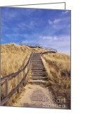 Dune Grass Greeting Cards - Way to Dune Greeting Card by Angela Doelling AD DESIGN Photo and PhotoArt