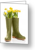 Growing Water Greeting Cards - Wellington Boots Greeting Card by Christopher Elwell and Amanda Haselock