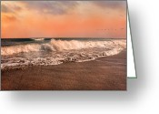 Topsail Island Greeting Cards - Were Having the Tide of Our Lives Greeting Card by East Coast Barrier Islands Betsy A Cutler