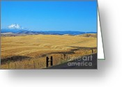 Wheatfields Photo Greeting Cards - Wheatfields and Mount Hood Greeting Card by   FLJohnson Photography