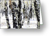 Snowy Tree Greeting Cards - White Autumn Greeting Card by The Forests Edge Photography