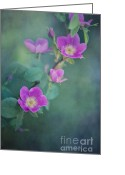 Edible Greeting Cards - Wild Roses Greeting Card by Priska Wettstein