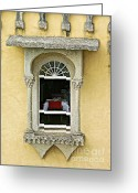 Old World Photography Greeting Cards - Window with a View Greeting Card by David Letts