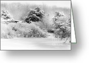 Bare Trees Greeting Cards - Winter Landscape 2 Greeting Card by Julie Palencia