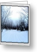 Snow Posters Greeting Cards - Winterlude In Abitibi Greeting Card by Danielle  Parent