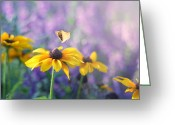 Art On Wall Greeting Cards - Wonderlust Greeting Card by Amy Tyler