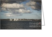White Clouds Greeting Cards - Yachts Waitemata Harbour Auckland New Zealand Greeting Card by Colin and Linda McKie