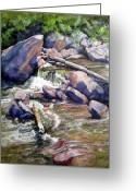 Outdoors Pastels Greeting Cards - Streamside Greeting Card by Carole Haslock