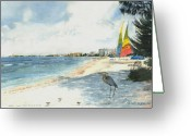 Heron Greeting Cards - Crescent Beach on Siesta Key Greeting Card by Shawn McLoughlin