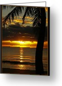 Coconut Greeting Cards - A Touch of Paradise Greeting Card by Holly Kempe
