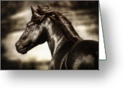 Santa Barbara Digital Art Greeting Cards - Andalusian Spirit Greeting Card by Nick Sokoloff
