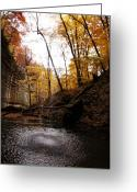Anna Villarreal Garbis Greeting Cards - Autumn Falls III Greeting Card by Anna Villarreal Garbis